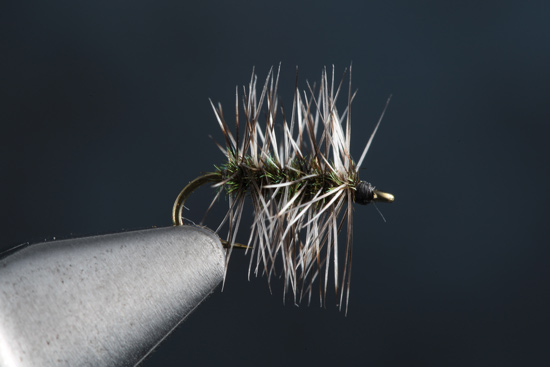 Fly Tying Griffith's Gnat step-by-steps and video with Charlie Craven.