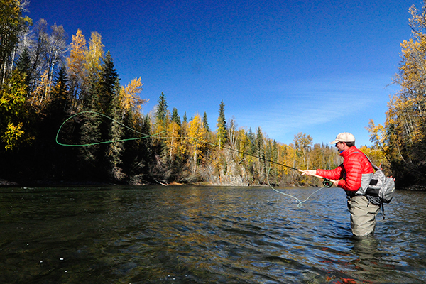 Fall, for me, is steelhead time. It's a time to head to the Pacific Coast or the Great Lakes