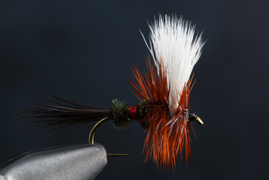 Fly Tying the Royal Wulff step-by-step and how-to video featuring expert tier Charlie Craven.