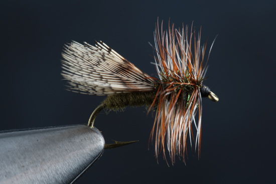 How to fly tie the Spent Partridge Caddis step-by-steps and video.