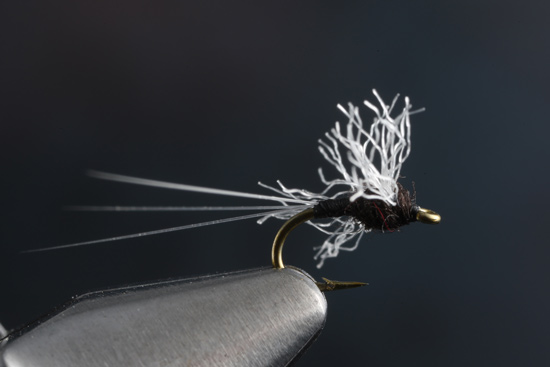 Fly Tying The Trico Spinner and video with expert tier Charlie Craven