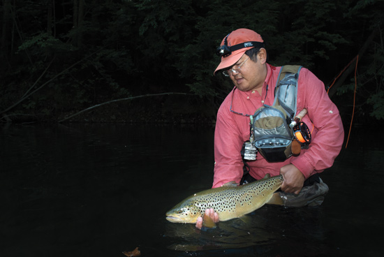 Brown Trout at Dark