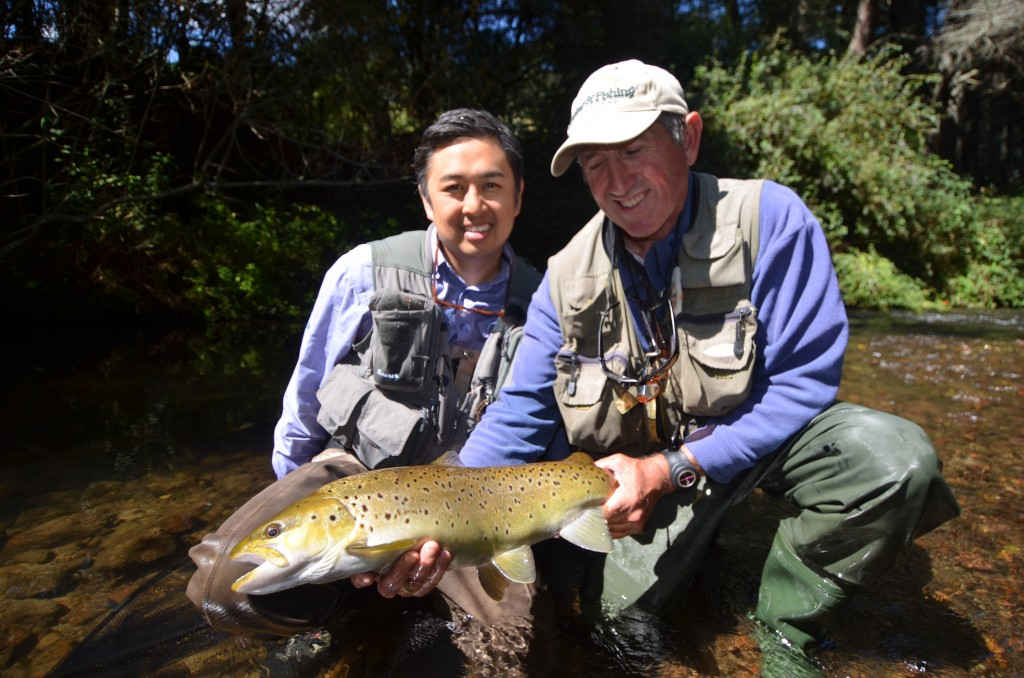 Giant Brown Trout