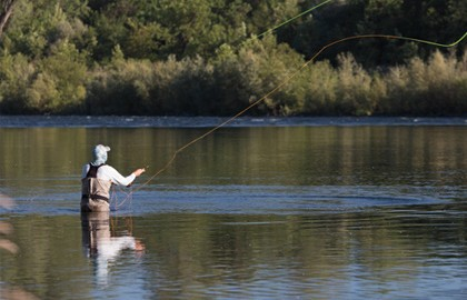 California-Switch-Feature-Fly-Fisherman