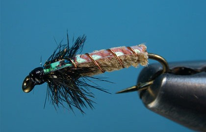 It has always amazed me that caddis, one of our favorite summertime bugs, are so easily forgotten