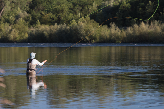 California fly fishing fly fisherman for Trout fishing northern california