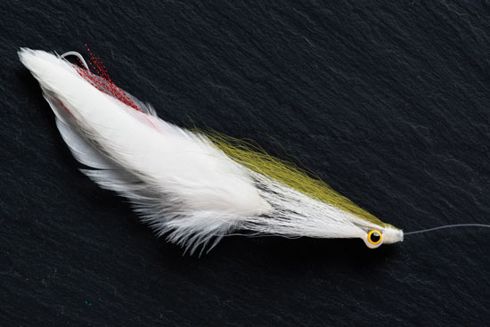 I was at a fly-fishing show at The Bear's Den in Taunton, Massachusetts,  one weekend and there were over a dozen saltwater tiers showing their  patterns.