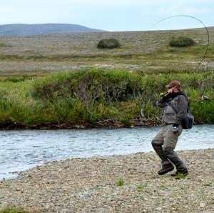 fish landing