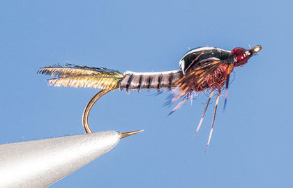 Fly-Tying-the-Swimming-Isonychia-Nymph-Fly-Fisherman