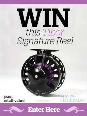 Win-this-Tibor-Reel-widget