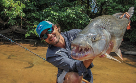 Tigerfish almost always jump when hooked, and their thrashing, twisting antics result in many