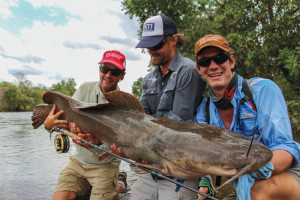 Vundu are predatory catfish that survive and even dominate in tigerfish-infested waters. They are difficult to tame on heavy conventional tackle—getting a giant vundu on a fly rod is unheard of. Photo: Oliver White