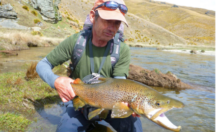 Long-lived brown trout can live in the same spot a decade or longer.