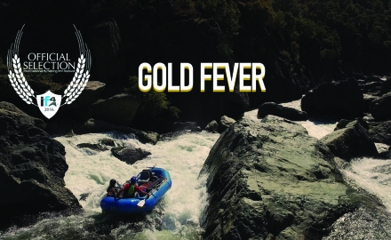 Gold Fever catches the excitement and adventure of finding a gold mine of trout fishing in your backyard'and of having it all to yourself. Catch Brown Trout