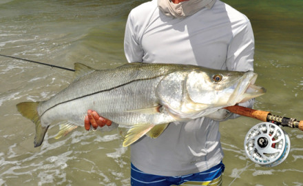 Up your snook game by reading