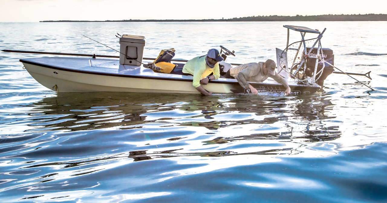Tarpon Tracking Program