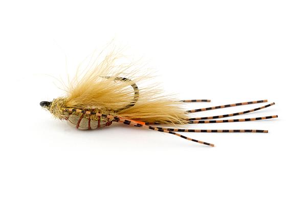 Best Carp Flies