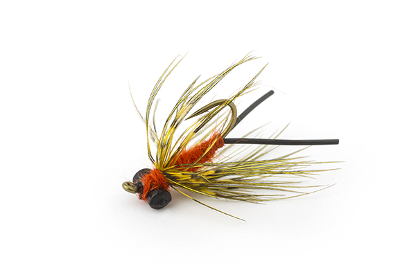 http://www.flyfisherman.com/files/2016/09/Carp-Carrot.jpg