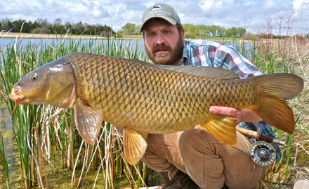 As you explore your home water, keep in mind what they are eating to select the best carp flies!