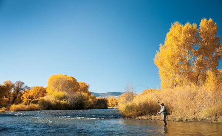 The Upper Rio Grande: Colorado's best-kept Secret!