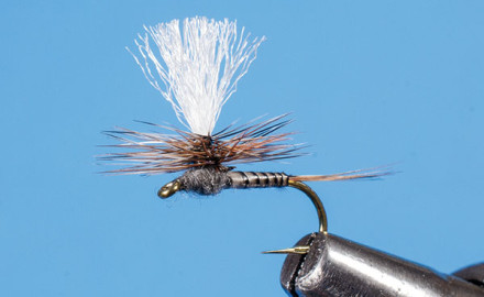 Tweaking the Adams Fly