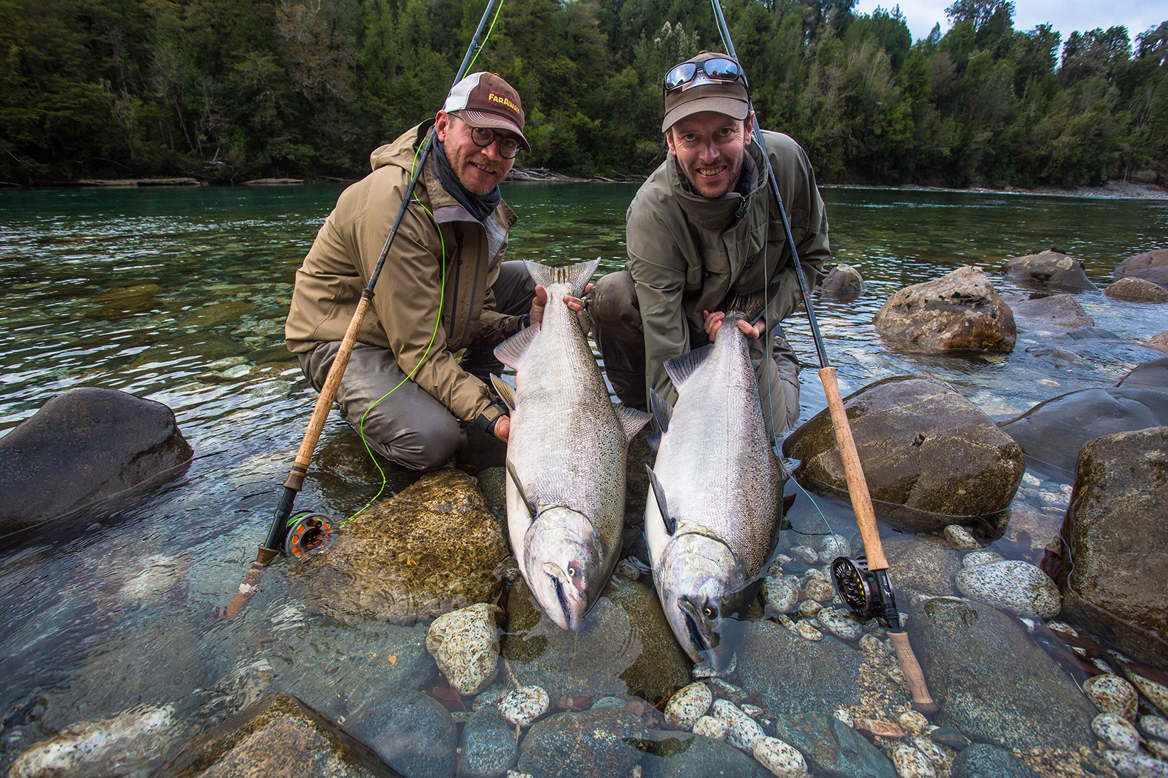 Salmon in Patagonia Show Diverse Lineage