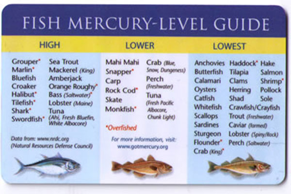 Mercury in Fish Chart