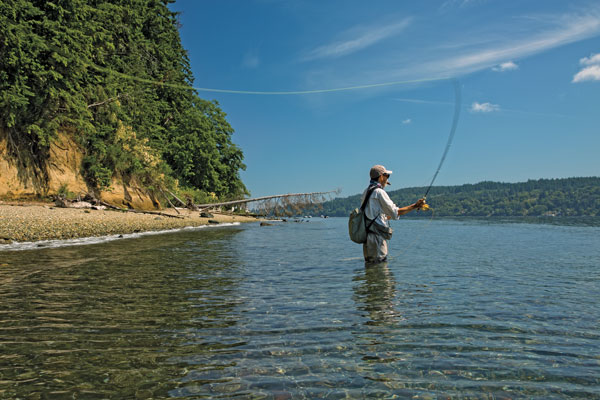 Searun cutthroat of puget sound for Puget sound fly fishing