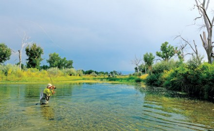 Fly-Fishing-a-Side-Channel-on-Bighorn-River