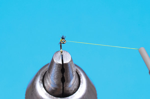 Perfect Fly