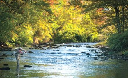 Lackawanna River