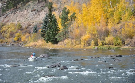 Anglers, guides and trout in Southern Colorado are all toughing it out this season in an exceptional drought.
