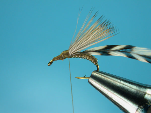 Step-4-Clown-Shoe-Caddis