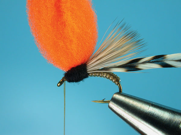 Step-6-Clown-Shoe-Caddis