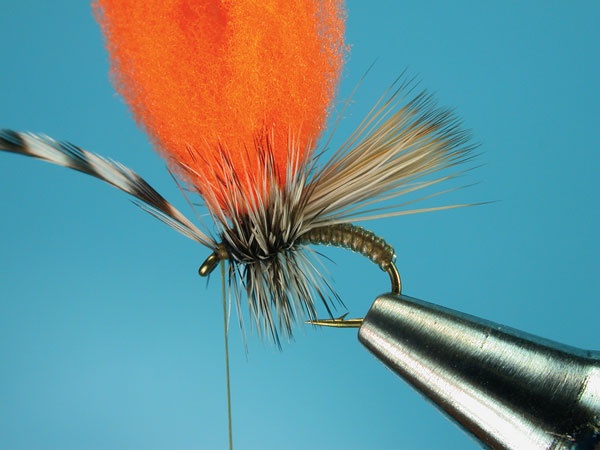 Step-7-Clown-Shoe-Caddis
