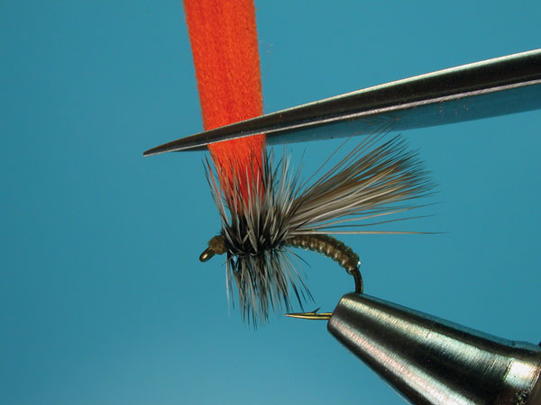 Step-8-Clown-Shoe-Caddis