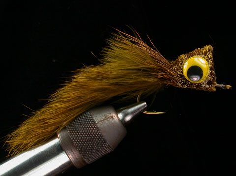 //www.flyfisherman.com/files/fly-tying-the-cat/cat-beauty-fly-fisherman.jpg