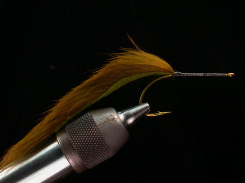 //www.flyfisherman.com/files/fly-tying-the-cat/cat-step-1-fly-fisherman.jpg