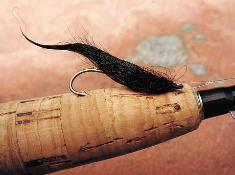 //www.flyfisherman.com/files/fly-tying-the-dc-leech/dc-leech-beauty-fly-fisherman.jpg