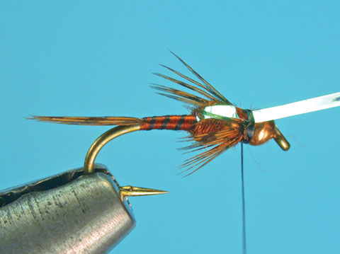 //www.flyfisherman.com/files/fly-tying-the-two-bit-hooker/two-bit-hooker-step-8-fly-fisherman.jpg