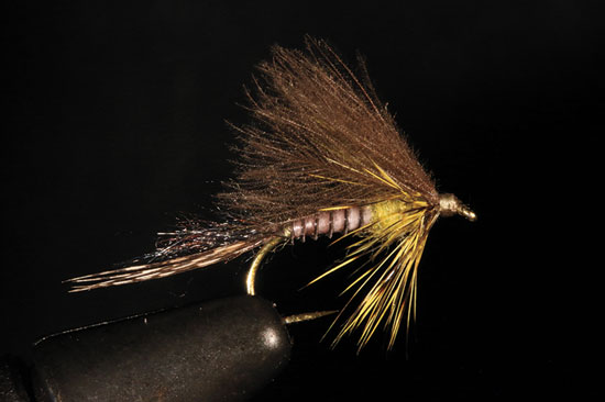 //www.flyfisherman.com/files/from-the-vise-of-rene-harrop/cdc-biot-cripple-fly-fisherman.jpg