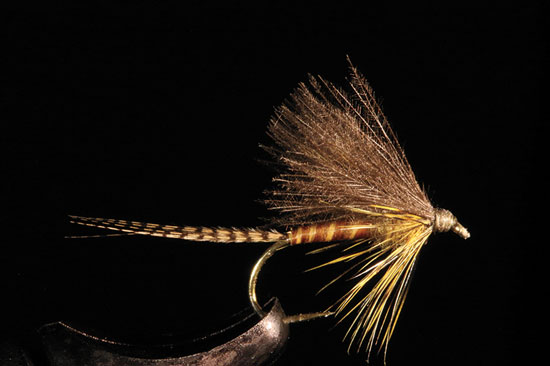 //www.flyfisherman.com/files/from-the-vise-of-rene-harrop/cdc-biot-emerger-fly-fisherman.jpg