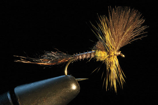 //www.flyfisherman.com/files/from-the-vise-of-rene-harrop/cdc-last-chance-cripple-fly-fisherman.jpg
