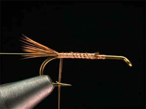 //www.flyfisherman.com/files/hares-ear/hares-ear-nymph-step-3.jpg