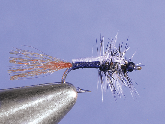 //www.flyfisherman.com/files/midges-top-to-bottom/stuck-in-the-shuck-midge.jpg