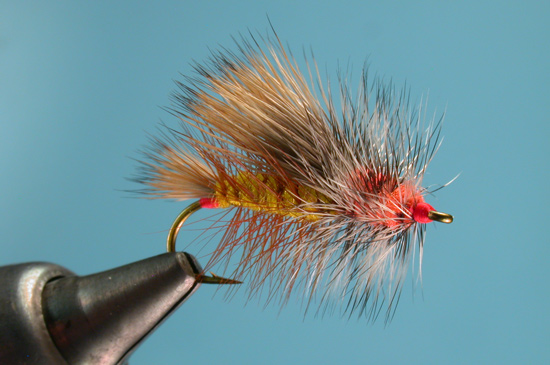 //www.flyfisherman.com/files/stimulator/stimmy-13.jpg