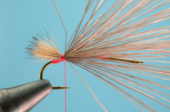 //www.flyfisherman.com/files/stimulator/stimmy-2.jpg