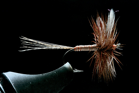 //www.flyfisherman.com/files/trusty-rusty-fly-recipes/lunns-particular.jpg