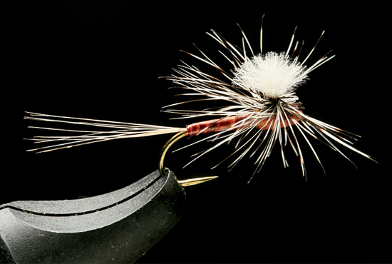 //www.flyfisherman.com/files/trusty-rusty-fly-recipes/rusty-cdc-biot-paraspinner.jpg