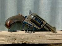 1155404274_14043060001_GATV0806-Colt-still